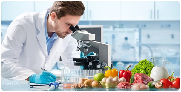 Know-How Food Research Help In Building Healthy Lifestyle
